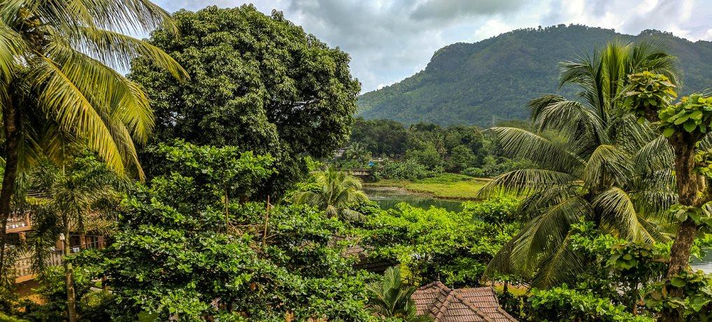 Ayurveda-Kur im grünen Indien